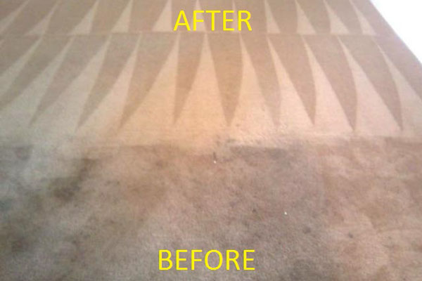 Residentail Carpet Cleaning Eugene Oregon